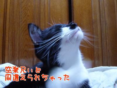 P1140006編集②.jpg
