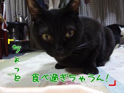 P1140277編集②.JPG