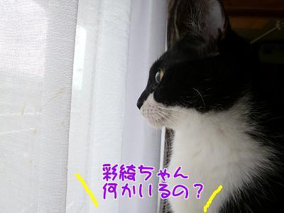 P1140314編集④.JPG