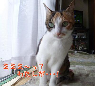 P1140330編集②.JPG
