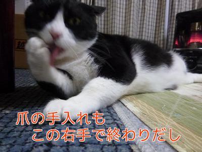 P1140613編集②.jpg