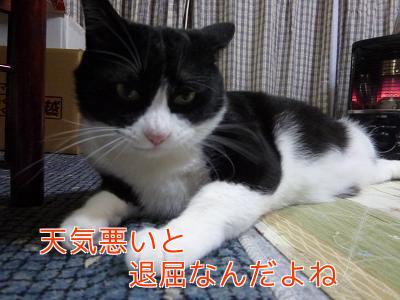 P1140622編集②.jpg
