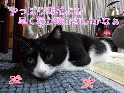 P1140637編集②.jpg