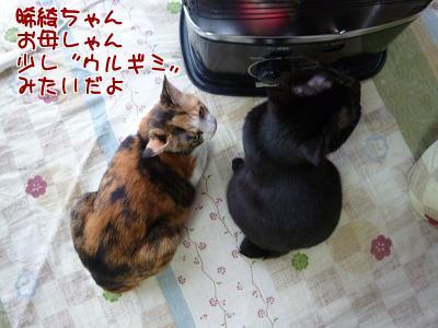 P1140683編集②.jpg