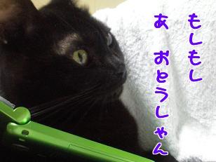 P4041249編集②.jpg