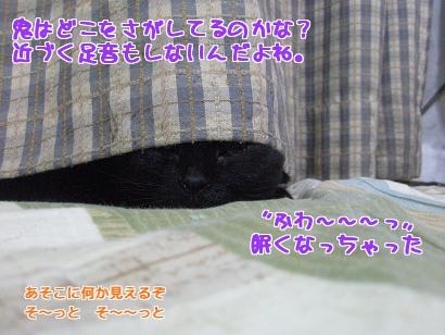 P4171874編集②.jpg