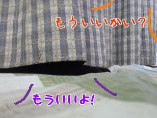 P4171879編集②.jpg