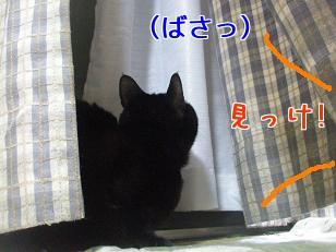 P4171881編集②.jpg