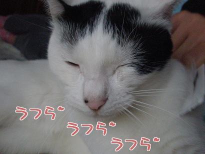P4232105編集②.jpg