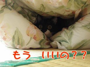 P5032727編集②.jpg