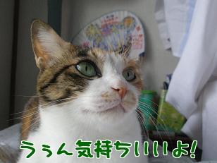 P5032743編集②.jpg