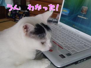 P5042794編集②.jpg
