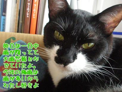 P6033894編集②.jpg