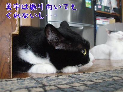 P6054091編集②.jpg