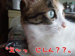 P6244438編集②.jpg