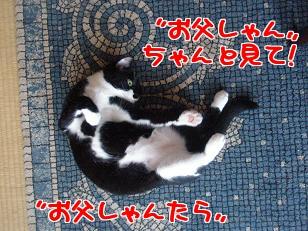 P6254466編集②.jpg