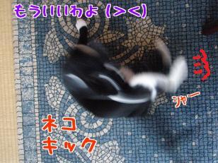P6254467編集②.jpg