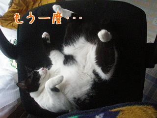 P7014554編集②.JPG