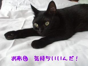 P7185335編集②.jpg