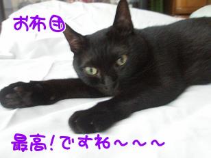 P7185346編集②.jpg