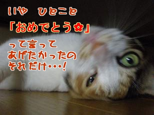 P7305767編集②.jpg
