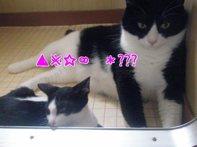 P9110517編集②.jpg