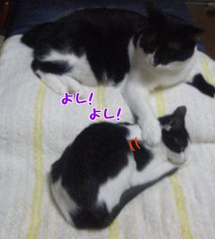 P9110526編集②.jpg