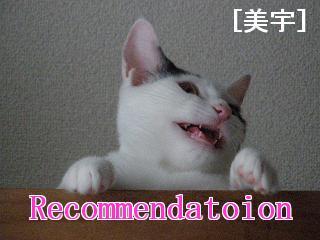 Recommendatoin美宇.jpg