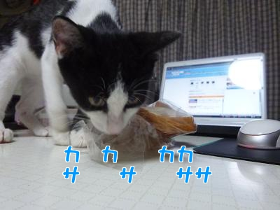 P1020910編集②.jpg