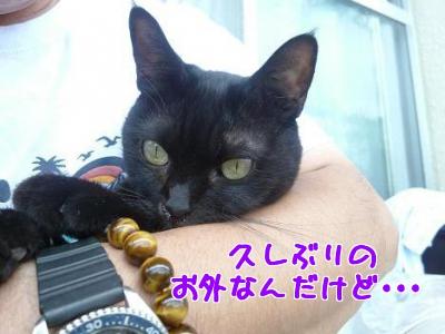 P1030043編集②.jpg