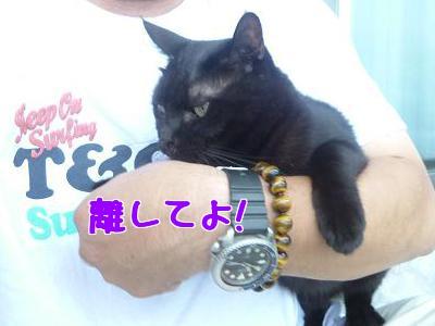 P1030045編集②.jpg