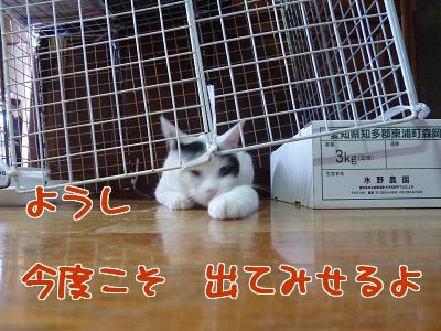 P1030212編集②.jpg