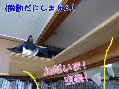P1030308編集②.jpg