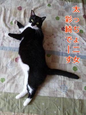 P1050612編集②.jpg