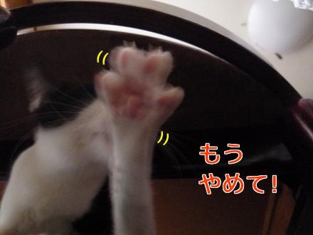 P1050684編集②.jpg