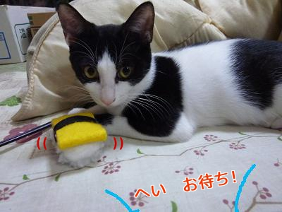 P1050783編集②.jpg