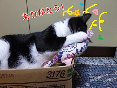 P1060101編集②.jpg