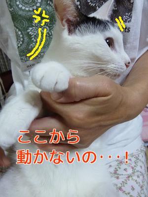 P1060500編集②.jpg