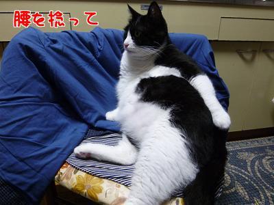 P1060900編集②.jpg