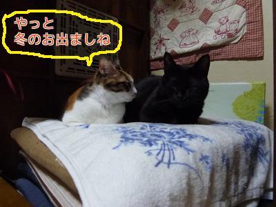 P1070414編集②.jpg