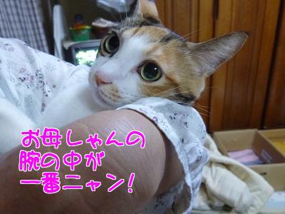 P1070654編集②.jpg
