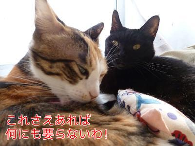 P1080327編集②.jpg