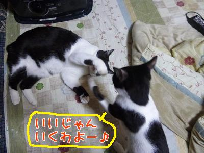 P1090642編集②.jpg