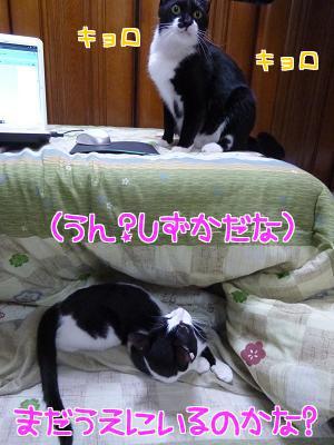 P1090713編集②.JPG