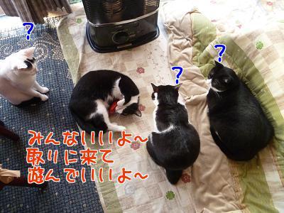 P1090765編集②.JPG