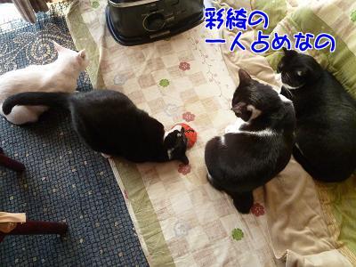 P1090771編集②.JPG