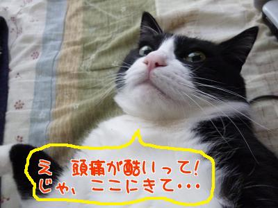 P1110367編集②.jpg