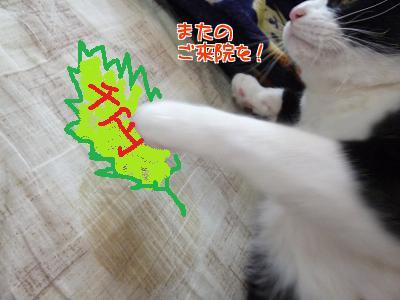 P1110370編集②.jpg