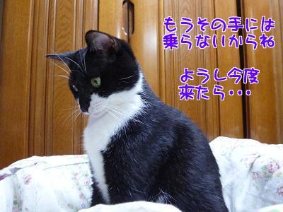 P1110745編集②.jpg