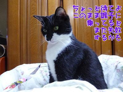 P1110747編集②.jpg